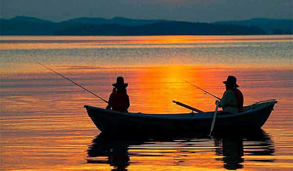 Активатор клева Сухая кровь (Dry Blooder) для рыбалки