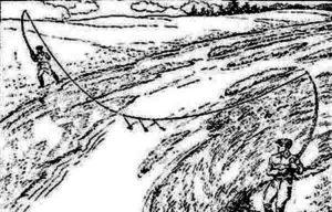 Ловим жереха на перетяжку