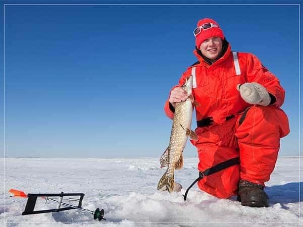 Ловля щуки на зимнюю жерлицу