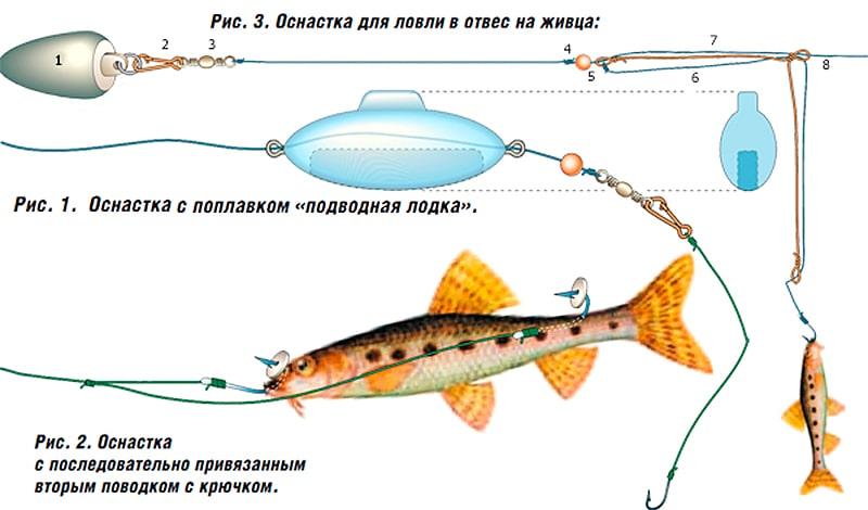 На что ловить судака