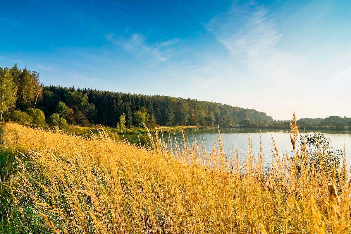 Рыбалка в Смоленской области. Карта рыболовных мест...