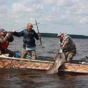 Ловля сома с лодки