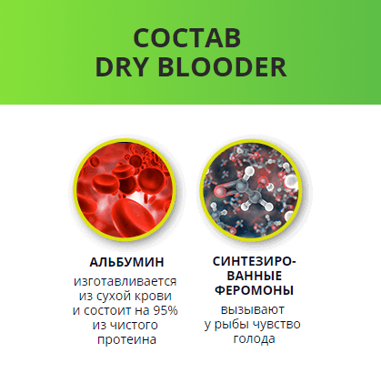 Dry Blooder зимний