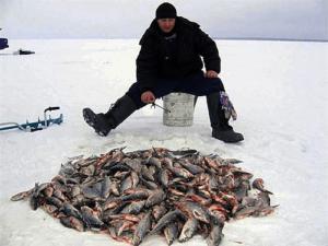 Как ловить больше рыбы