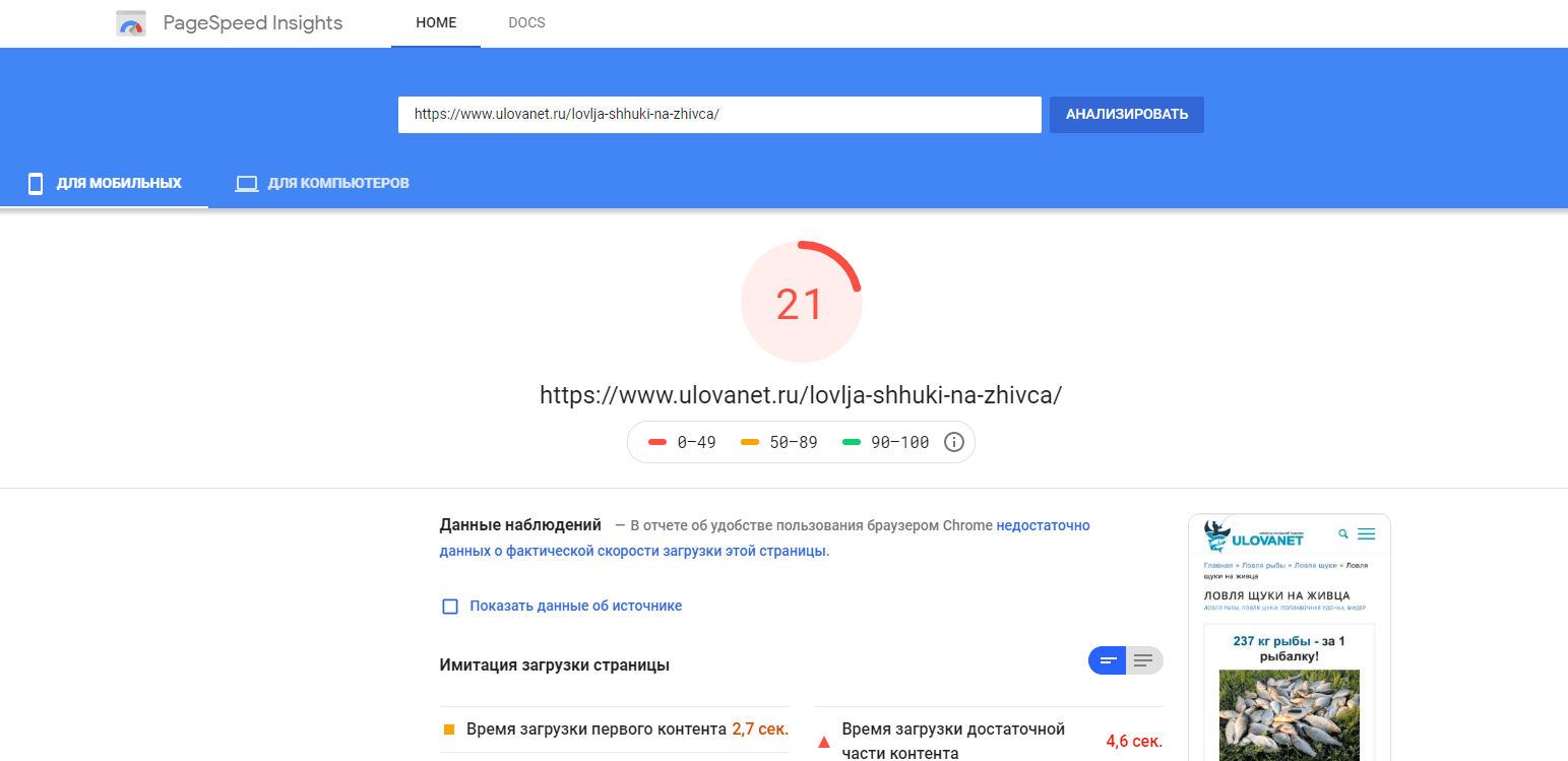 Pagespeed1